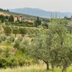 Chase the Sun, 270 chilometri da Cesenatico a Tirrenia